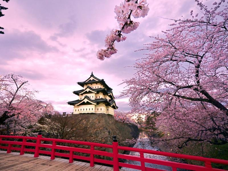 hirosaki_castle_japan.psd
